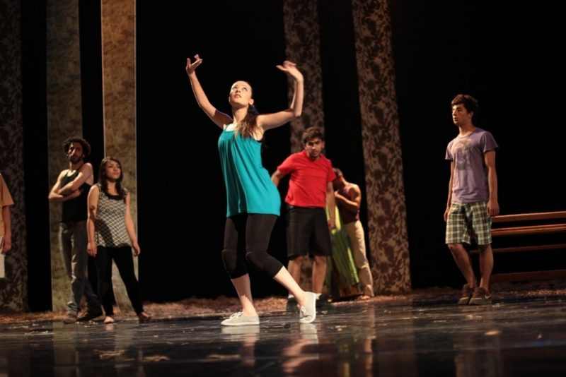 The Palestinian Performing Arts Network