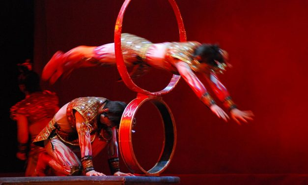 Dispelling The Myths Of Circus