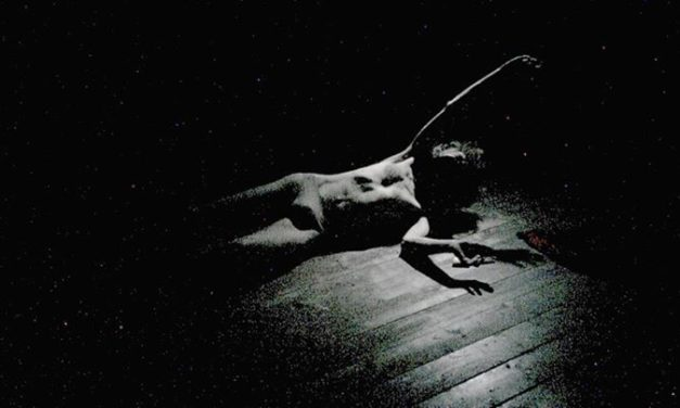 How Can We Transform The World Through One's Self? Amsterdam's Butoh Festival