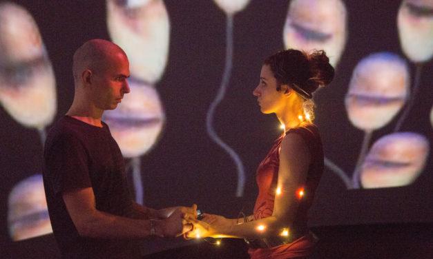 Ellen Pearlman: Brain Opera, Telematic Performance, And Decoding Dreams