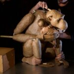 "Great Ape: ""Chimpanzee"" at HERE Arts Center"
