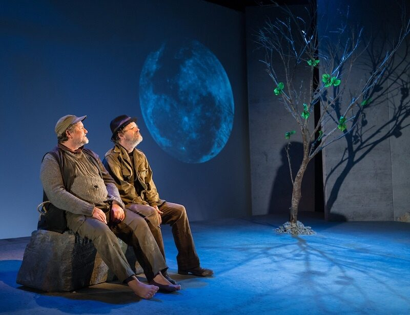 "Riddled With Vivid Snapshots of The Human Condition: ""Waiting for Godot"" in New Zealand"