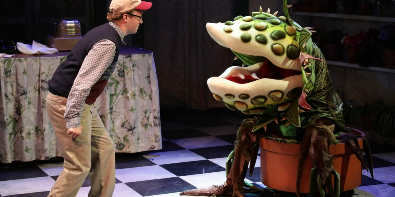 "Back to Somewhere That's Green: ""Little Shop of Horrors"" at Boston's Lyric Stage Company"