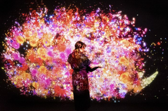 Color, Collaboration, Community: teamLab's New Family-Friendly Art Installation