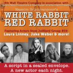 """Rabbits in the Circus of COVID Isolation: A Review of """"White Rabbit Red Rabbit"""""""